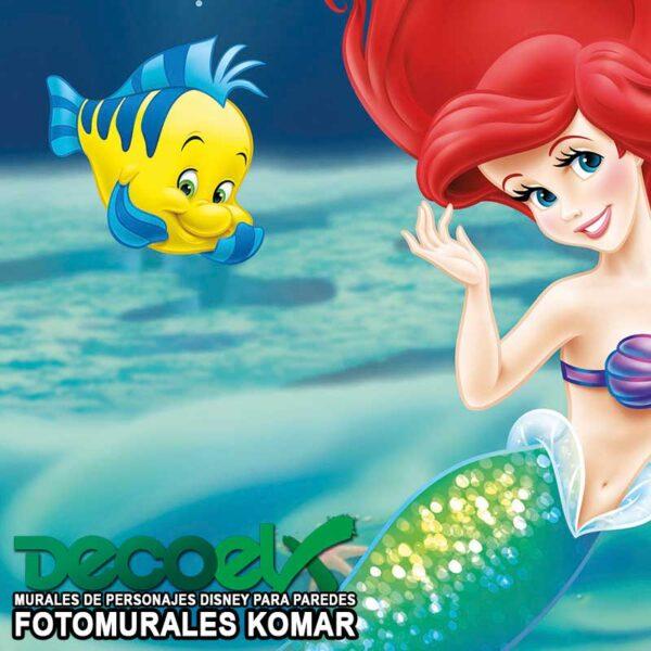 4-463 Zoom Ariel