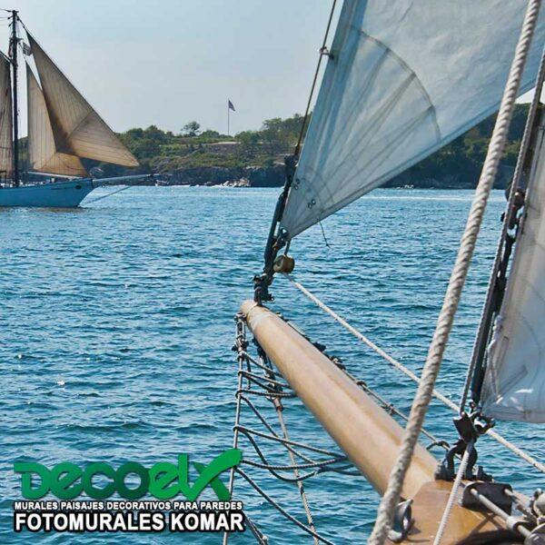 8-526 Sailing Zoom
