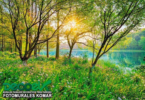 8-524 Lago Primaveral