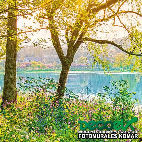 8-524 Zoom Lago Primaveral