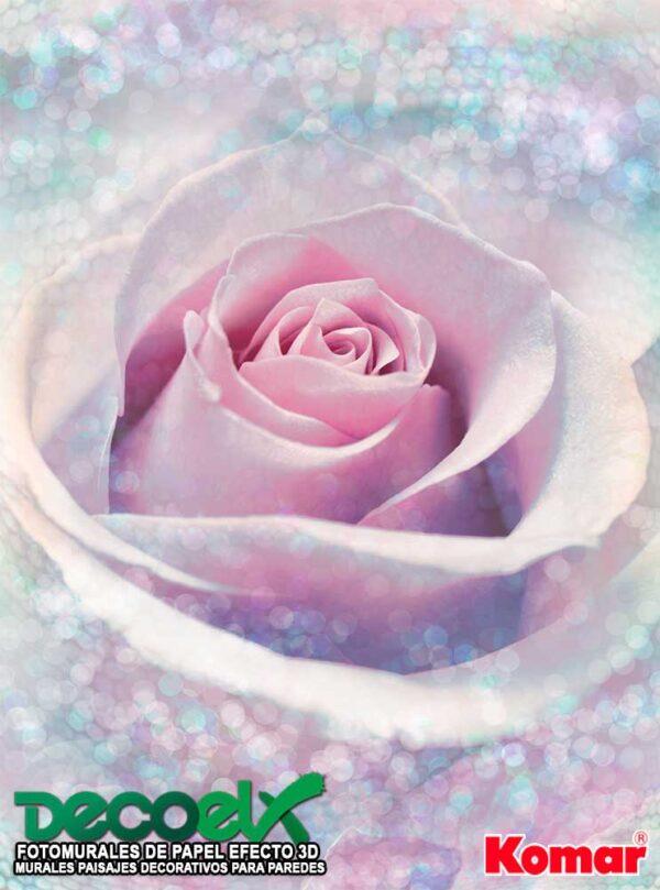 XXL2-020 Rosa Delicada