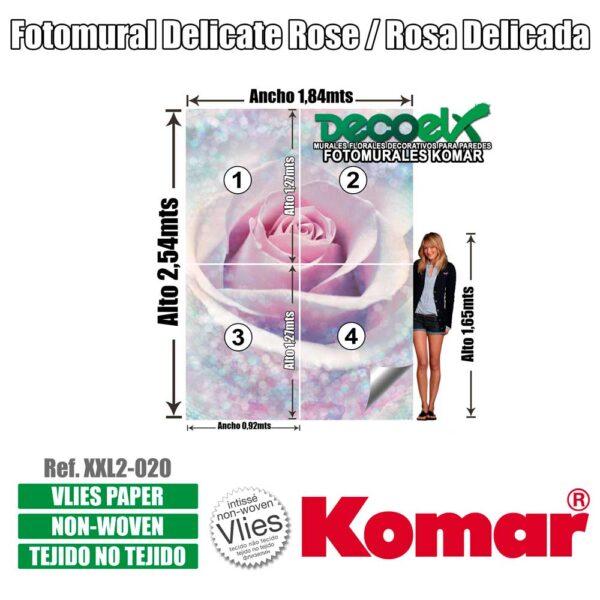 XXL2-020 Detalles Rosa Delicada