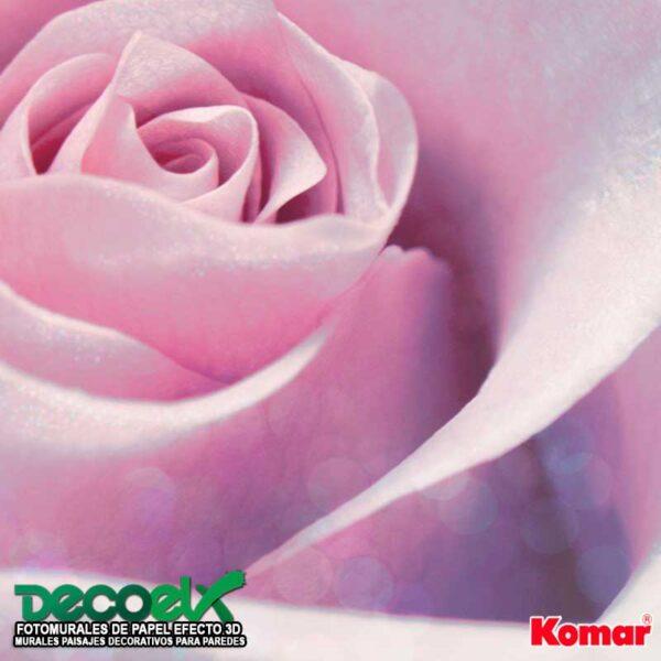 XXL2-020 Zoom Rosa Delicada
