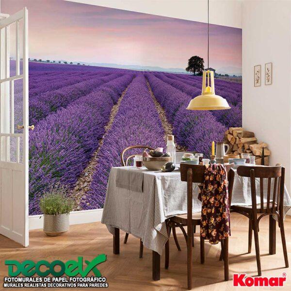 XXL4-036 Interior Provenza