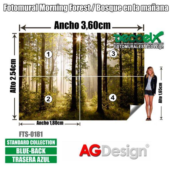 FTS0181 Detalles Bosque en la mañana