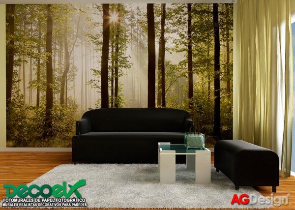 FTS0181 Interior Bosque en la mañana